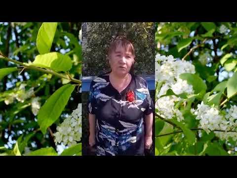 Лидия Маслова - Черемуха