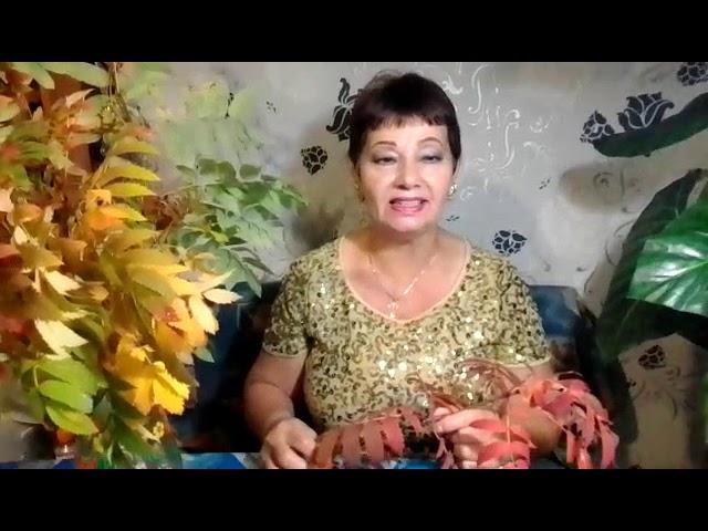 Светлана Сафина - Золотой возраст